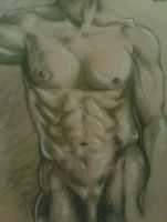 Male Torso by Queran