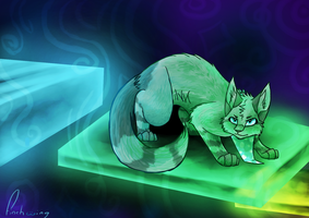 The Next Step by Finchwing