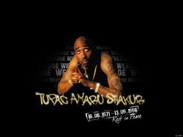 2Pac, All Eyez On Me by dotVision