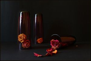 the roses 1 by An-gora