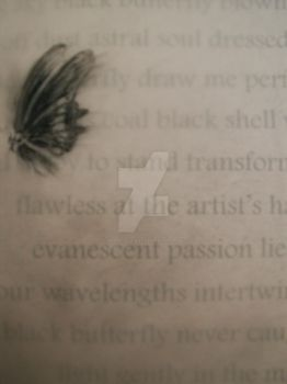 Black Butterfly, detail by White-Lily-Art