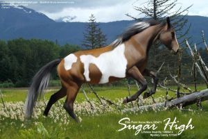 Sugar High by JuneButterfly-stock