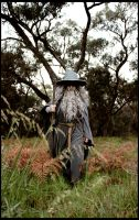 The Hobbit: Never Late by Berpi
