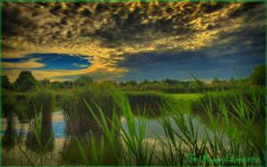 Hungarian landscapes.HDR-picture(photo series)18. by magyarilaszlo