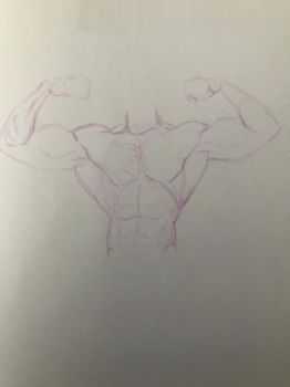 Male torso sketch by batscat