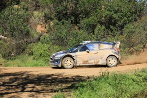 2014, Elfyn Evans, Ford, Loule, Rally Portugal by F1PAM