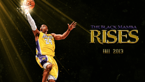 Black Mamba Rises wallpaper by chronoxiong