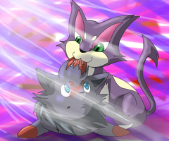 Purrloin and Zorua by LordSecond