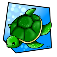 Turtle by Kerryopia