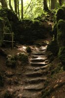 Puzzlewood 42 by Tasastock