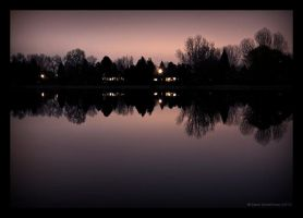 Mauve Night by Shelagnoa