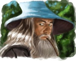 Gandalf the Grey by Quinneas