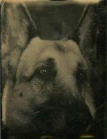 Storm: Tintype by xXCold-FireXx
