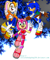 Team Rose- Sonic Boom Version by JuliatheHedgehog336