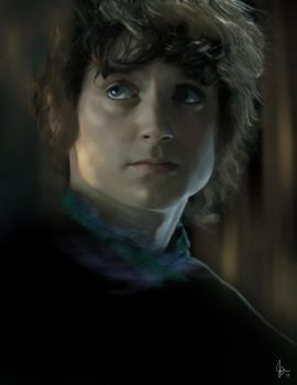 Frodo2 by evaniron
