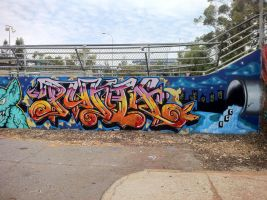 HQ wall 59 by PerthGraffScene
