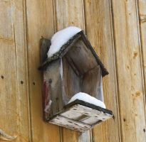 Bird House by SkyStockProvider