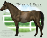 CF Star of Zeus by JNFerrigno
