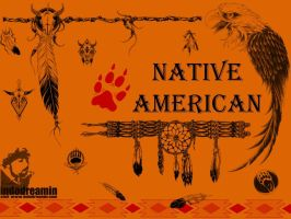 Native American by indodreamin