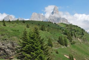 Passo Rolle 479 by Mecy82