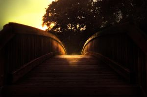 The Bridge to the Plains by tommymurphy