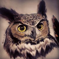 Great Horned Owl by GabrielleC-Drawings