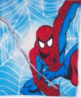 Spider-Man Wall Banner by NickMockoviak