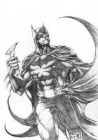 Batman The Caped Crusader by agussumantri