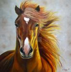 Jas Horse by j0rosa