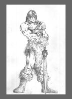 Conan the Barbarian by Master-Majic