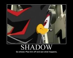 Shadow Motivational Poster by shadrougeforever