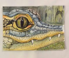 A is for Alligator by O-Tripp