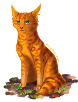 Firestar. Warriors by Romashik-arts