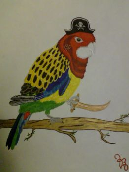 Pirate Parrot by rosaliine