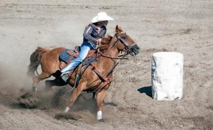 Rodeo11-2014 by Lonewolf-Eyes