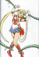 The perils of Sailormoon by Koku-chan