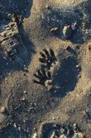 Foot Prints in the Sand by RBrownKreationz