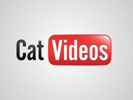 Cat Videos by viktorhertz