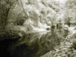 A Dream of River II by d-minutiv