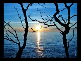.Pacific Silhouette. by EleCtrOfunK