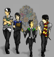 DC: Harry Potter by computer-sick