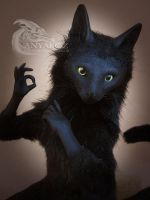Alphonso the Cat Room Guardian by AnyaBoz