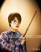 Harry Potter and the Socerer's Stone by Bridgels