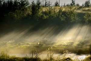 Godrays Over The Marshland by JestePhotography