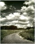 The road ahead. by 4420