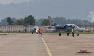 L-159 and JAS-39C Gripen by Thunderbolt120