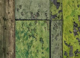 Shades of Green by WTek79