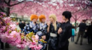 Ouran Host Club @ Hanami by StockholmCosWave