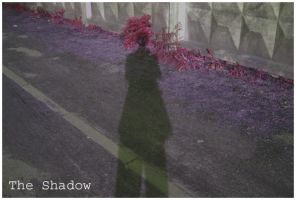 The shadow by Proxile