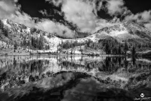 Reflection Off of the Early Winter Water BW by mjohanson